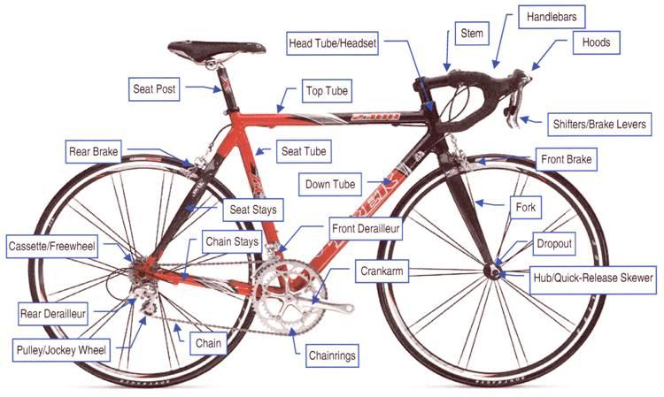 What Is Bike Week In Myrtle Beach