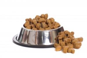 cibo_per_cani