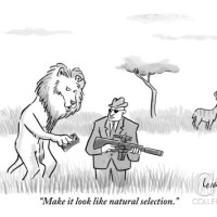 Persuasione o selezione naturale?