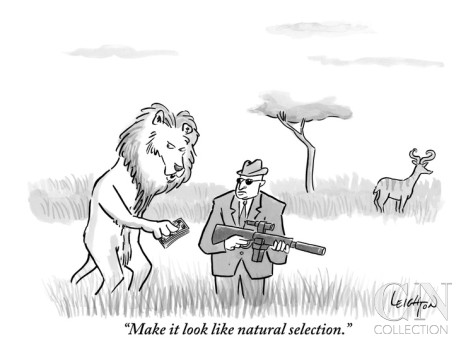 robert-leighton-make-it-look-like-natural-selection-new-yorker-cartoon
