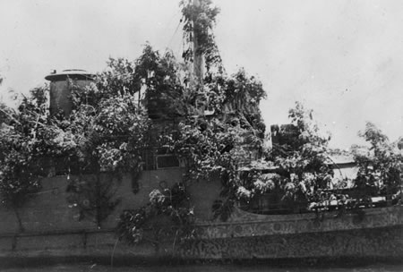 HNLMS_Abraham_Crijnssen_Covered_In_Branches