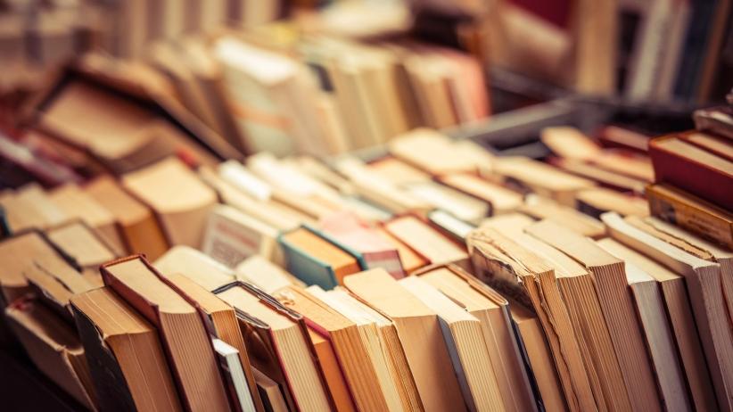 Il solito disastroso rapporto ISTAT sulle letture