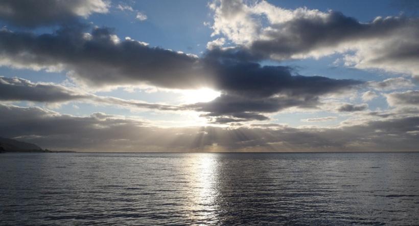 solas_ocean_cariberry